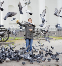 Girl Feeds Pigeons In The Street