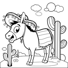 Mexican Donkey In The Desert. ...