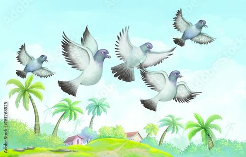 lecace-ptaki-nad-tropikalna-wyspa