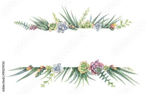 Cuadros en Lienzo Watercolor vector banner of cacti and succulent plants isolated on white background
