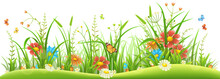 Green Grass With Spring Flower...