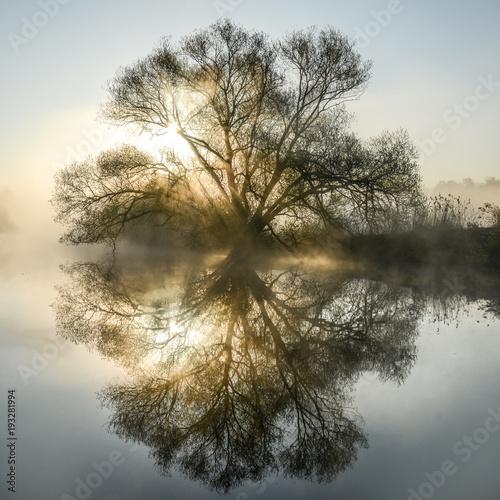 Sonnenaufgang am Fluß mit Morgennebel