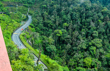Curvy highway road in the natural beauty around the green mountains of Malaysia.