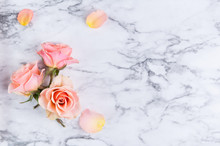 Three Peach Colored Roses With...