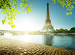 canvas print picture spring time in Paris, Eiffel tower