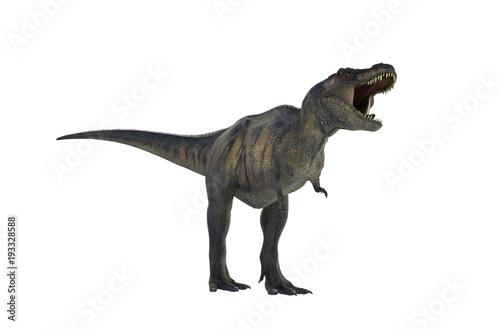 Photo  3D Illustration of a Dinosaur Tyrannosaurus Rex on white background