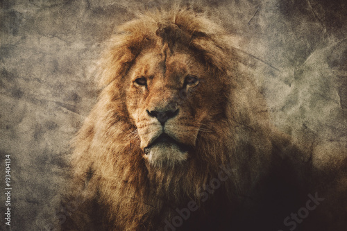 Fotomural Majestic lion in a vintage portrait.