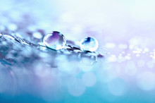 Drop Of Water On Feather On Mirror Surface Macro With Sparkling Bokeh On Blue Violet Blurred Background. Abstract Romantic Delicate Magical Artistic Image In Pastel Colors, Free Space.