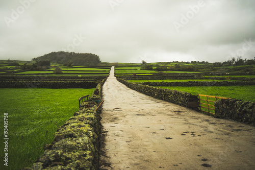 Tuinposter Weide, Moeras Green fields with fences