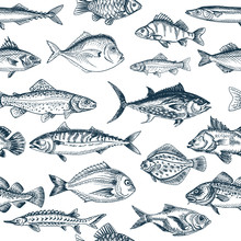 Vector Illustration Sketch - Fish Pattern