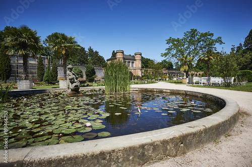 Botanischer Garten Karlsruhe Seerosenteich Buy This Stock Photo