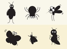 Various Insects Such As Spider...