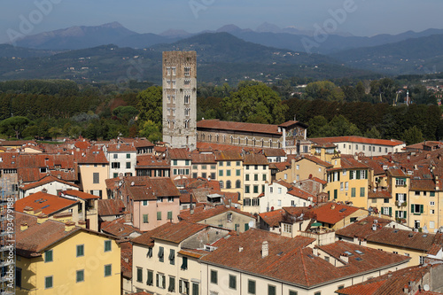 Fototapety, obrazy: Tower of the Basilica de San Frediano in Lucca, Italy