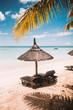 Sun lounger under a palapa on the beach