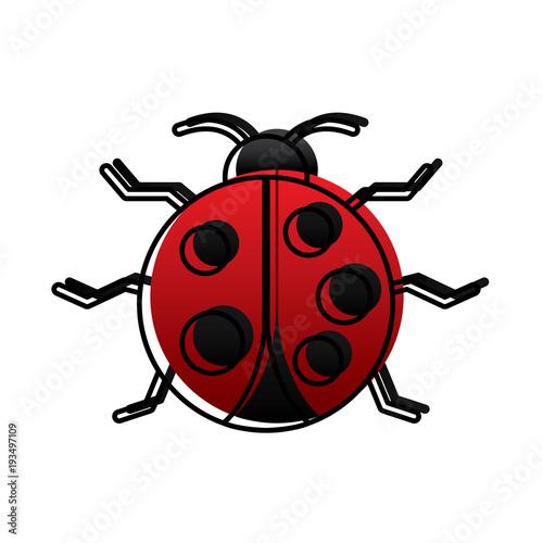 Fényképezés virus bug alert error insect animal vector illustration