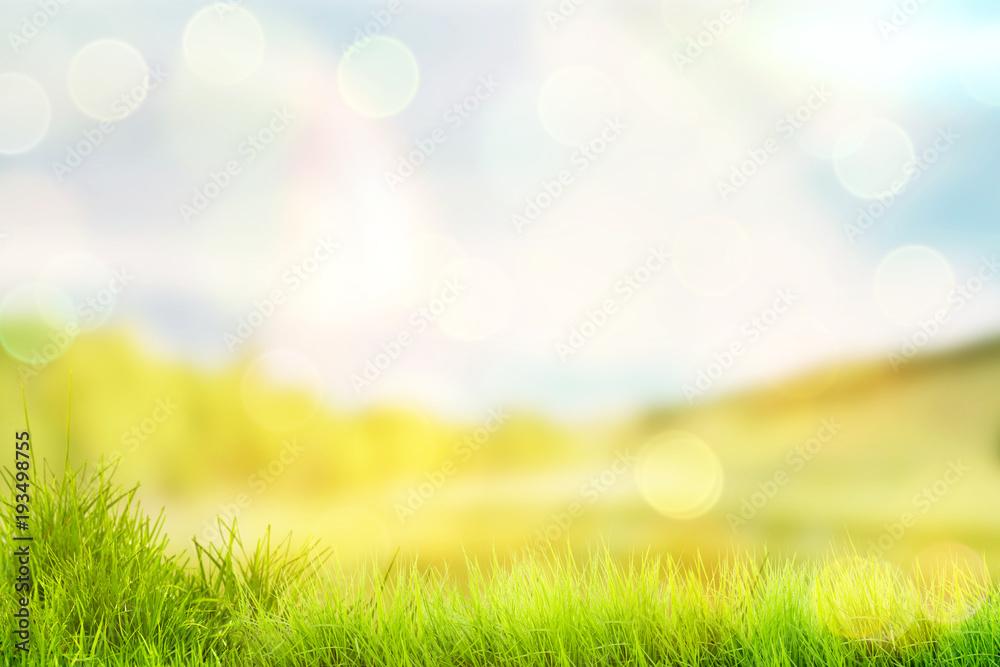 Fototapety, obrazy: Bright spring or summer background