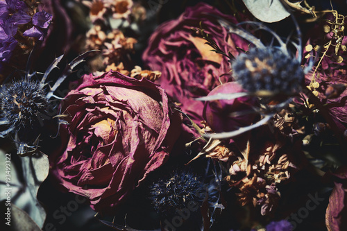 Foto op Aluminium Bloemen Bouquet of dried flowers. Dark floral background
