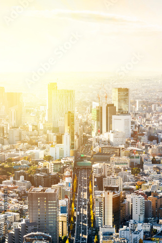 Spoed Foto op Canvas Dubai Asia Business concept for real estate and corporate construction - panoramic modern city skyline bird eye aerial view of Shinjuku & Shibuya under blue sky in Roppongi Hill, Tokyo, Japan
