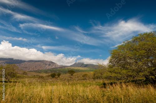 Foto op Canvas Blauwe jeans Maui