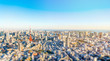 Asia Business concept for real estate and corporate construction - panoramic modern city skyline bird eye aerial view of tokyo tower in Roppongi Hill, Tokyo, Japan. Miniature Tilt-shift effect