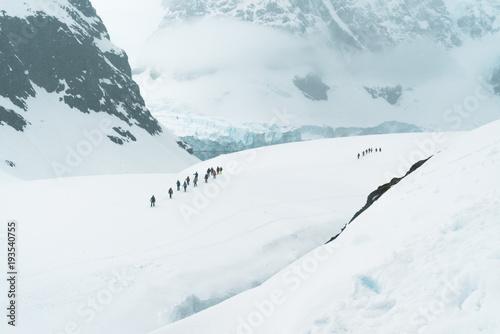 Fotografia  Mountaineering Group exploring the Landscape - Antarctica