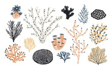 Collection Of Various Corals And Seaweed Or Algae Isolated On White Background. Beautiful Underwater Species, Deep Sea Creatures, Aquatic Or Ocean Flora And Fauna. Doodle Colorful Vector Illustration.