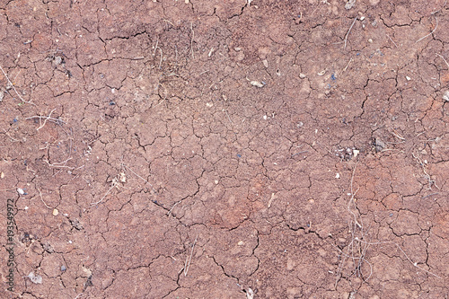 Foto  Ground seamless texture. Clay soil cracked.