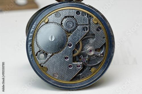 Fotomural  Be Beryllium ressort montre