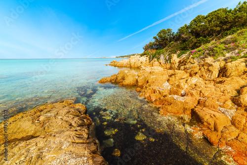 Fotografie, Obraz  Piccolo Pevero beach in Costa Smeralda