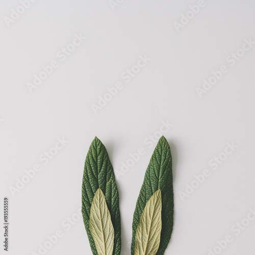 Photo Bunny rabbit ears made of natural green leaves on bright background