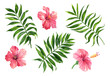 canvas print picture Realistic tropical botanical foliage plants. Set of tropical leaves and flowers: green palm neanta, hibiscus. Hand painted watercolor illustration isolated on white.