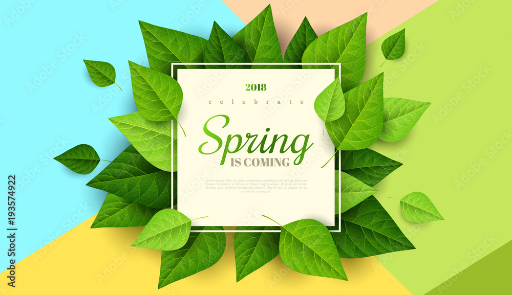 Fototapety, obrazy: Spring background with green leaves