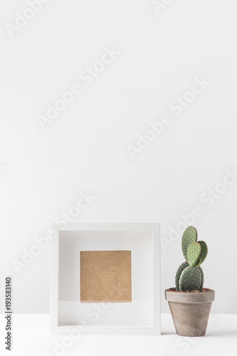 close-up view of beautiful green potted cactus and empty photo frame ...