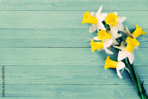 Daffodils flowers on wooden background