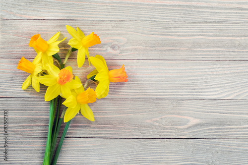 In de dag Narcis Daffodils flowers on wooden background