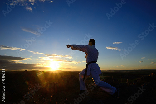 Foto op Aluminium Vechtsport Specialist in martial arts making technical movements.