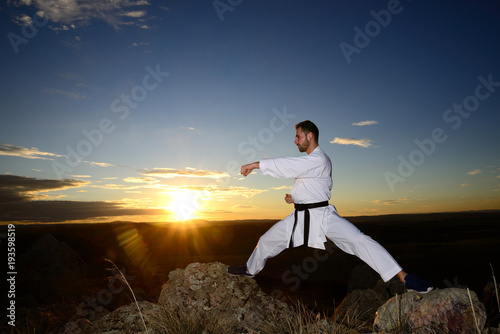 Poster Vechtsport Specialist in martial arts making technical movements.