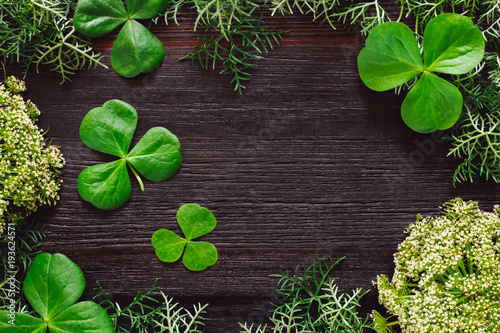 Fotografia, Obraz  Shamrocks with Mixed Foliage on Dark Table