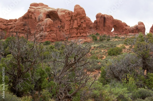 Fotografie, Obraz  Arches National Park has many adventures for everyone in the family