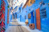 Fototapeta Uliczki - Beautiful street of blue medina in city Chefchaouen,  Morocco, Africa.