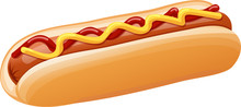 Hot Dog With Ketchup And Mustard Vector Illustration