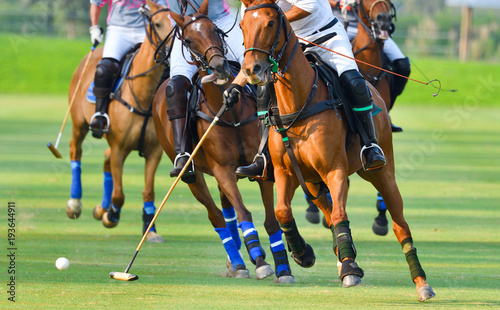 Selective focus the Horse Polo players