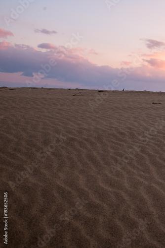 冬の鳥取砂丘にて風紋の朝