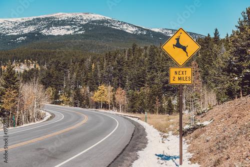 Billede på lærred Deer crossing sign on highway at autumn
