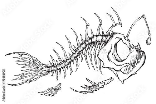 Photo Angler fish skeleton mascot in ink technique.