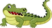 Cartoon Crocodile Isolated On ...