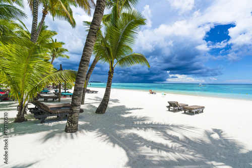 Trou aux biches, public beach at Mauritius islands, Africa Canvas Print