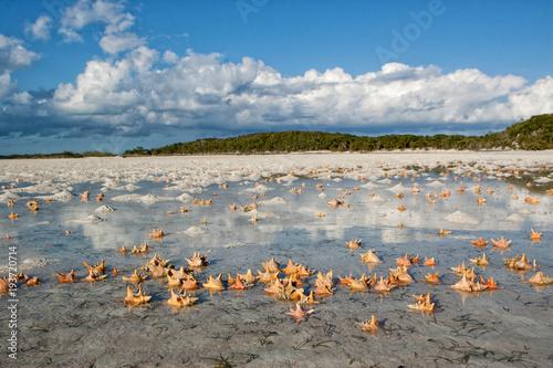 A beautiful tidal flat near Norman's Cay in the Bahamas Fototapete