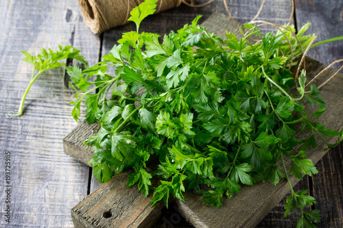 Sprigs of fresh parsley on the rustic kitchen table with copy space.
