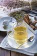 Infusión de poleo menta hecha con flores de recolección silvestre y un infusor, bebidas calientes con propiedades medicinales